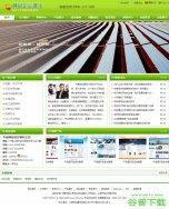 绿色帝国cms企业模板免费下载