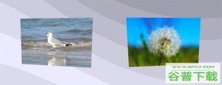 js+css3页面滚动图片倾斜动画特效代码免费下载