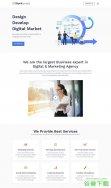 网络应用开发网站模板免费下载