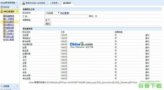AnyEiP企业内网办公系统源代码免费下载