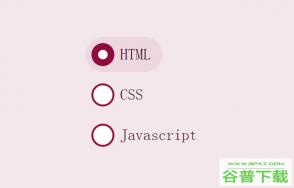 CSS3单选按钮动画特效特效代码免费下载